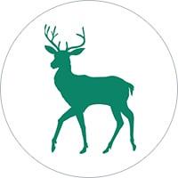 Canbury School Logo