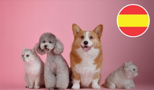 Spanish: Animals & Pets: Tengo una mascota